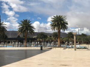 ACA Spring Forum - M Resort Pool